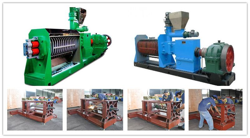 palm kernel oil pressing machine-double shaft