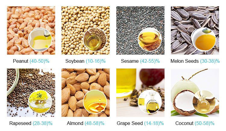 oilseeds can be processed by peanut oil making machine