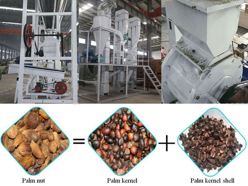 palm kernel cracking machines