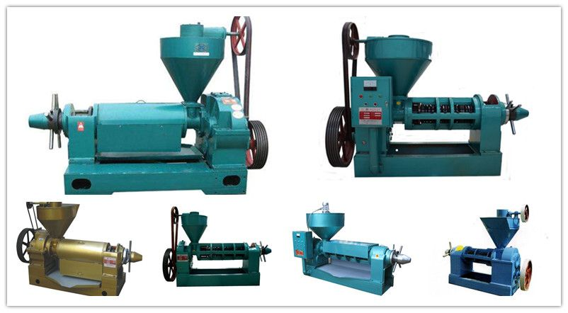 safflower seed oil expeller machines for sale