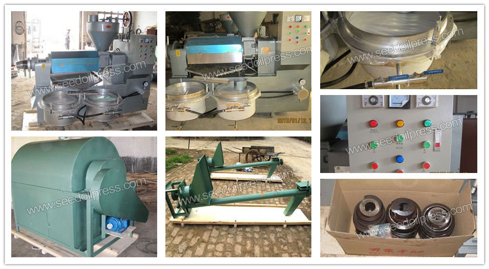 scerw oil press and oilseeds roasting machine exported to Philippines