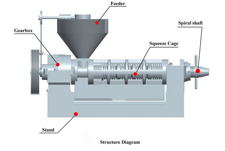 structure of screw oil press