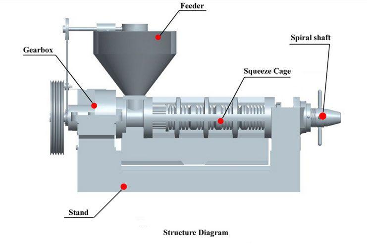 structure of screw oil press