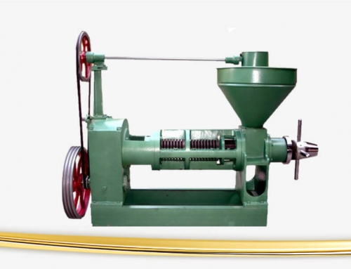 Safflower Seed Oil Press