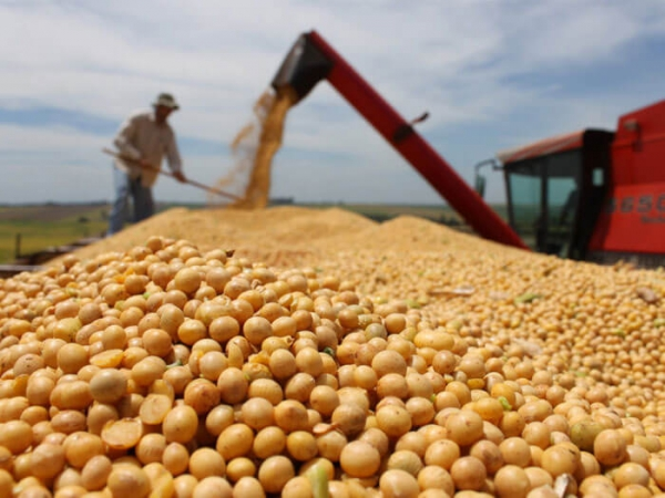 Floods Delay Argentine Soy Planting-exchange