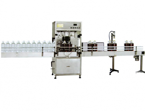 Edible Oil Filling Packing Machine