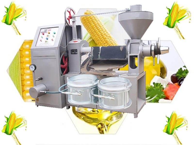 making corn oil by screw oil expeller