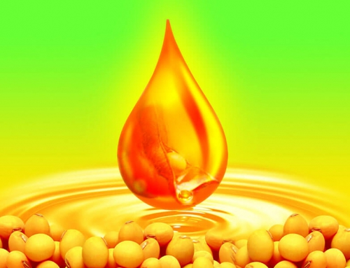 Fundamental Review Analysis of Soy Complex Futures