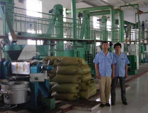 Flaxseed Oil Production Line