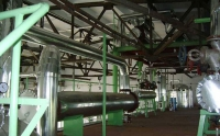 walnut oil production line