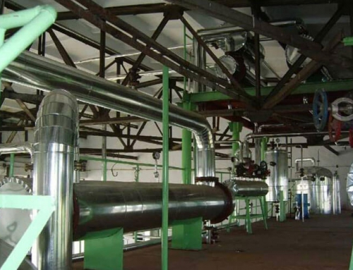 Walnut Oil Pressing Production Line