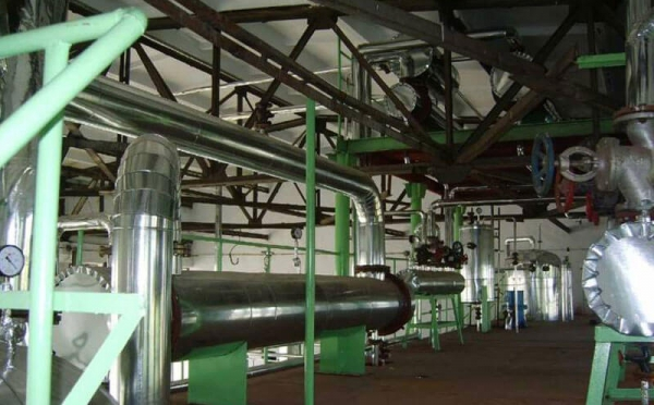 walnut oil production line