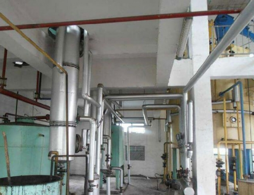 Rice Bran Oil Extraction Plant