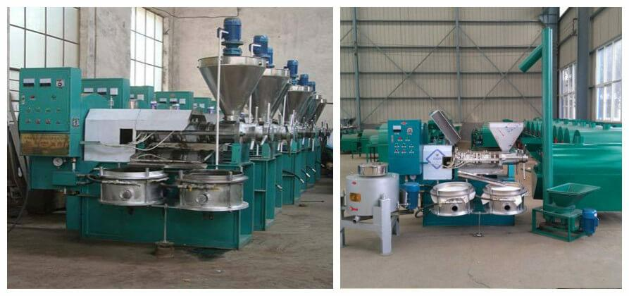 rapeseed oil press machine for sale