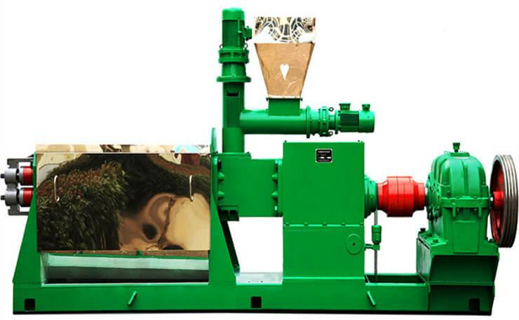 tea seed oil machine-double screw cold pressing