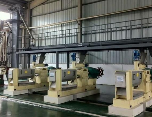 Tea Seed Oil Production Line